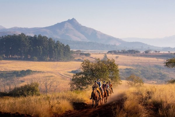 Horse riding with golden grass and mountains