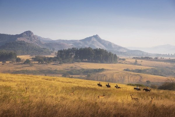 Horse riding in grassland with mountains