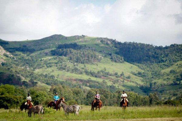 Ride with antelope in Eswatini