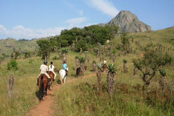 Horse riding in Swaziland with aloes and mountains