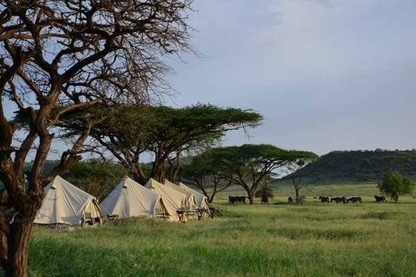 Serengeti mobile tented camp
