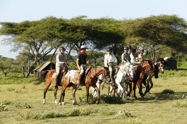 Horse safari from tented camp