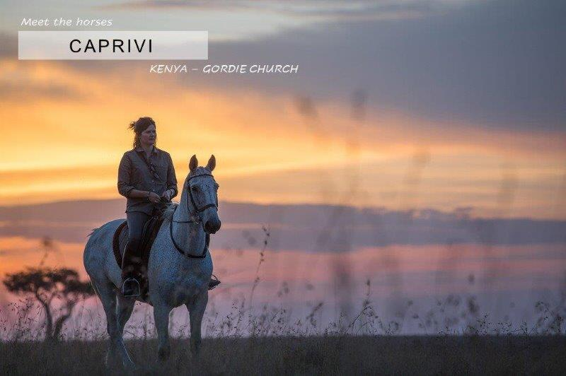 Woman on white horse at sunset