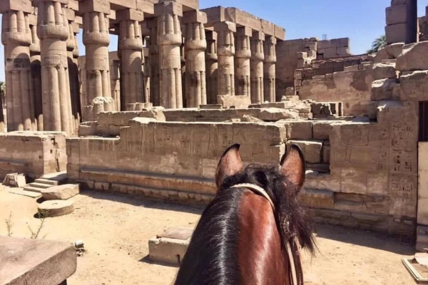 Egyptian ruins through horses ears