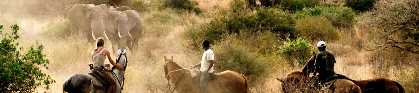 In the saddle, the true way to explore Tanzania