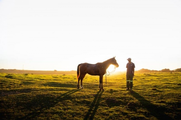 man standing with horse at sunset