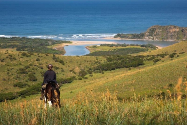horse riding on the wild coast with ocean in background