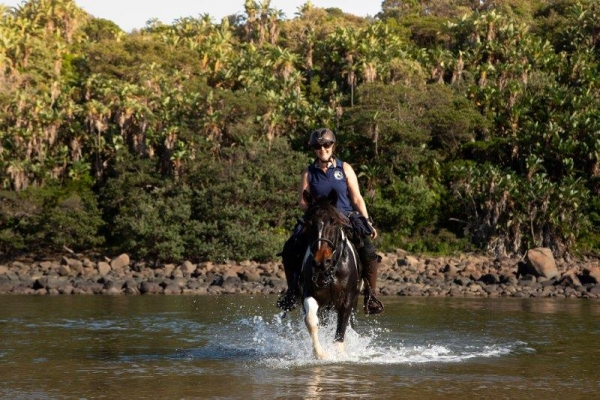 Horse riding through river