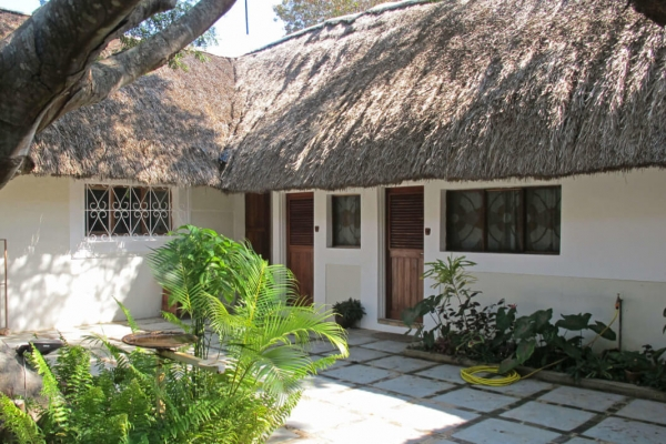 White thatched houses with tropical plants
