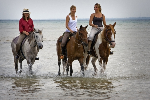 three smiling girls horse riding in water
