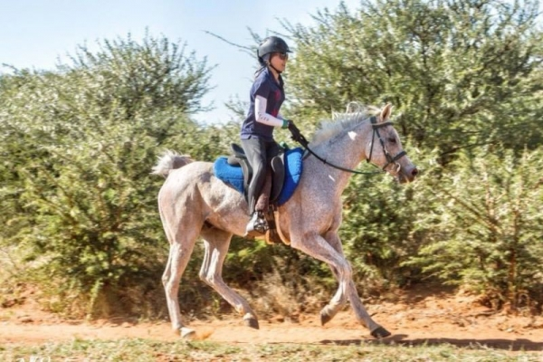 Girl on grey endurance horse