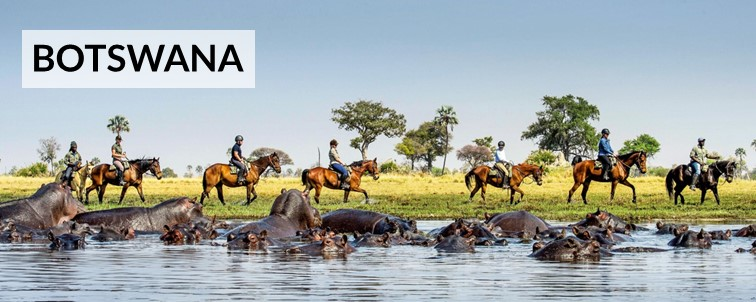 Horse riding in Botswana