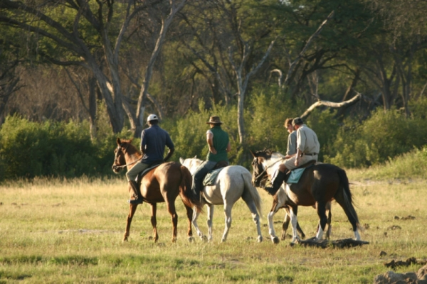 Horse riding in Hwange Zimbabwe