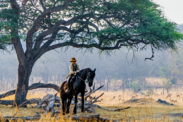 Lone rider on black horse in Africa