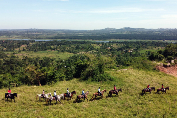 Line of horse riders